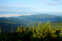 Clingman's Dome